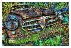 so bunt kann ein Autofriedhof sein. Natur und Technik ganz vereint