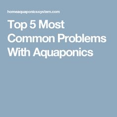 Top 5 Most Common Problems With Aquaponics