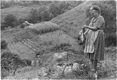 Eastern Kentucky, 1972still remember momma killing & picking a chicken for Sunday dinner. Only day of week we had meat unless it was bologna that daddy bought by the roll. Otherwise it was all vegetable dinner's from momma's garden with cornbread & biscuits, of course. I still love veggies.