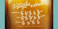 Fragola Font: Fragola is a bold and groovy script family with plenty of OpenType features and extra swashes. Combine Swash, Stylistic or Titling Alterna. Ice Cream Illustration, Booth Design, Glyphs, Spice Things Up, Your Design, Script, The Creator, Fonts, Creative