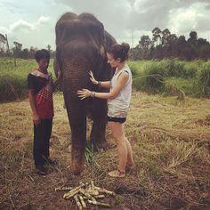 Happy Monday By @bearfrances #theelephantpants #TEP #TEPambassador #savetheelephants #elephants #IEF #brandsthatgiveback #fashionwithacause #namasté #yourecool #saveelephantsfeelgood  #0vr #brandambassador