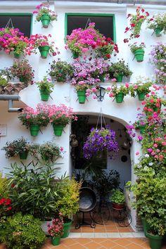 Patios de Cordoba, Spain