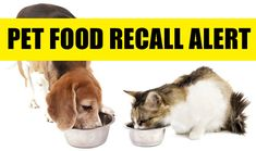 URGENT: Dog and cat food recall issued May 14, 2014. Please repin to spread the word!