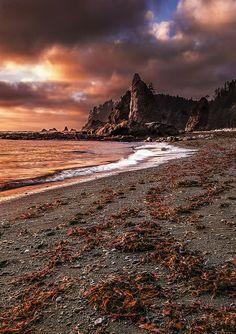 Rialto beach. Olympic National Park, Washington