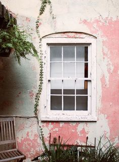 Walls and windows and plants Home Interior, Interior And Exterior, Interior Design, Murs Roses, Design Living Room, Pink Houses, Outdoor Living, Outdoor Decor, Design Furniture
