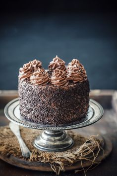 One Bowl Chocolate Cake with Chocolate Cream Cheese Frosting