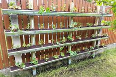 Build Vertical Garden this is how you plant strawberries in the gutter! Build Vertical Garden this is how you plant strawberries in the gutter! The post Build Vertical Garden this is how you plant strawberries in the gutter! appeared first on Garten. Jardin Vertical Diy, Vertical Garden Wall, Vertical Bar, Vertical Gardens, Strawberry Garden, Strawberry Plants, Garden Wall Designs, Garden Design, Landscape Solutions