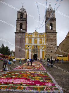 TLATLAUQUITEPEC: Alfombras florales, arte efímero. México.