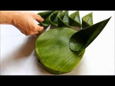 Arte Floral, Ikebana, Flower Show, Flower Art, Coconut Leaves, Flax Flowers, Fabric Bouquet, Modern Flower Arrangements, Flower Rangoli