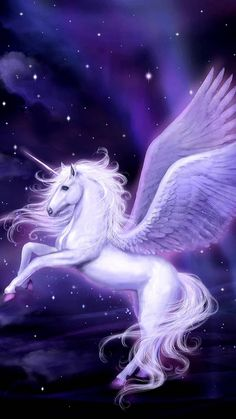 By Artist Unknown. Unicorn And Fairies, Unicorn Fantasy, Unicorn Horse, Unicorn Art, Mystical Animals, Mythical Creatures Art, Magical Creatures, Fantasy Creatures, Most Beautiful Horses
