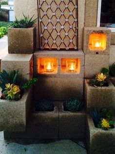 Succulents in cinder block planters