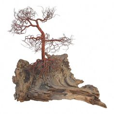 """Figure out even more relevant information on """"metal tree wall decor"""". Have a look at our internet site. Leaf Wall Art, Metal Tree Wall Art, Metal Art, Tree Wall Decor, Wall Art Decor, Painting Shower, Wire Tree Sculpture, Organic Modern, Driftwood Art"""