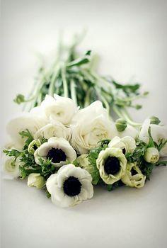 white anemones and ranunculus