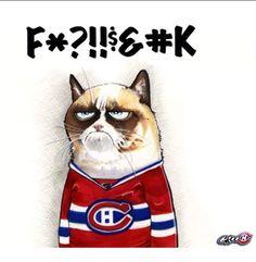 hockey fan Canada Eh, Hockey, Cats, Animals, Gatos, Animales, Kitty Cats, Animaux, Cat