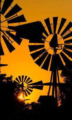 #print #inspiration #design #sheetstreet #africa #southafrica