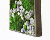 """Items similar to Plant Painting- Natural Grey Stone- No Care Green Wall Art. Real Preserved Plants. 18 x 18"""" on Etsy"""