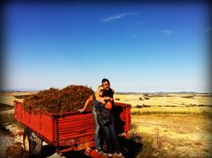 #Casanova de Neri - Sangiovese harvest   , September 2012 with Tammy Valery @fontanaro