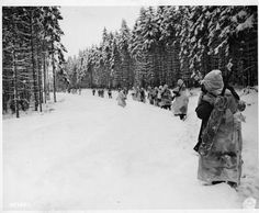 The Battle of the Bulge - Google zoeken