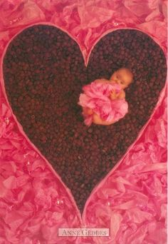 another baby in a heart ♥♥♥♥ ❤ ❥❤ ❥❤ ❥♥♥♥♥ Anne Geddes, Funny Kids, Cute Kids, Cute Babies, Cute Baby Pictures, Expecting Baby, Baby Puppies, Beautiful Babies, Simply Beautiful