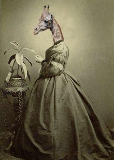 Olive  Vintage Giraffe 5x7 Print  Anthropomorphic  by AnimalFancy, $15.00