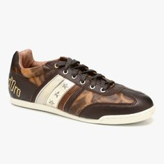 Ascoli Piceno Leather Sneaker in Brown & Gold with stars