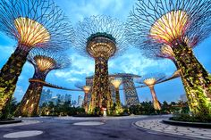Singapore ガーデンズ・バイ・ザ・ベイ