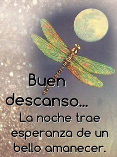 Spanish Greetings, Peaceful Life, Morning Messages, Spanish Quotes, Good Morning Quotes, Good Night, Wish, Thoughts, Humor