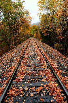 Rails to Fall Urban Nature, All Nature, Old Steam Train, Autumn Scenes, Railroad Tracks, The Railroad, Autumn Aesthetic, Train Tracks, Nature Wallpaper