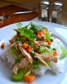 Slow Cooker Teriyaki by Rachel Schultz