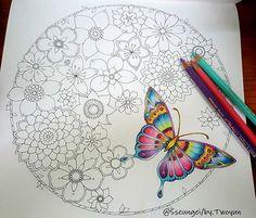 ⛦2016. 9. 26. . . 매지컬정글 ; Magical Jungle [ No.14 ] 컬러링 도구는 태그를 참고하세요. ➡ In Progress..☺ ➡ Colored pencil, see the tag. . . . . #마법의정글 #매지컬정글 #MagicalJungle #컬러링북 #ColoringBook #조해너배스포드 #JohannaBasford #출판사클 #KoreanVersion #ColoringArt #coluring #adultcoloringbook #mycreativeescape #jardimsecreto #카렌다쉬파블로 #Carandache #Pablo #ColorPencil #책스타그램 #취미#일상 #힐링 #Healing