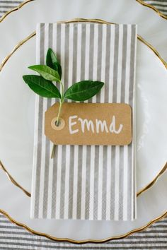 Cute idea for table settings--could do a leaf instead of the green sprig. Tag could say the name of the event instead of a certain person's name.