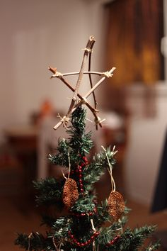 My homemade Christmas tree star! Photographed by me Gez Harris!