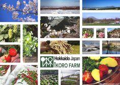 イコロ農園 場所: だてし, 北海道