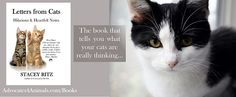 The book that tells you what your cats are really thinking...(every book sold supports spay/neuter efforts, too!)... http://www.amazon.com/Letters-Cats-Hilarious-Heartfelt-Notes-ebook/dp/B00U9U24RI/ref=as_sl_pc_ss_til?tag=kitinthecit-20&linkCode=w01&linkId=3ZXLA5H54RGOLQXH&creativeASIN=B00U9U24RI