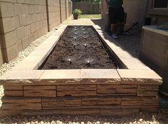 raised vegetable garden arizona - Google Search