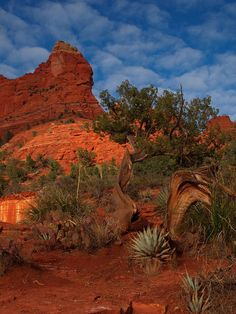 ✮ Soldier's Pass Trailhead - Sedona, Arizona... Sedona has to be one of the BEST places in Arizona! I loved it when we were here. :)