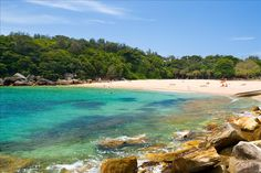 Shelly Beach Manly Been there, Donne that, Loved it !!!