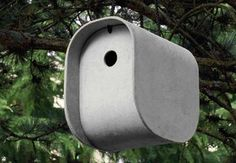 Birdhouses, bird feeders and bird baths are all ways to attract some of nature's friendliest creatures to your yard.  GardenDesign.com