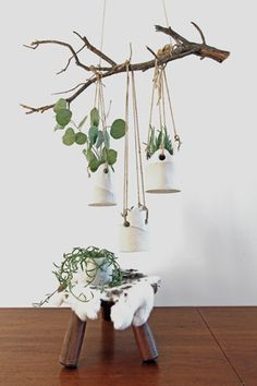 dover hanging planters