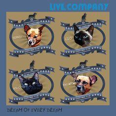 BONDE DA BARDOT:Cães e gatos são estrelas de capa de disco da banda de rock Live Company em prol da adoção responsável de pets