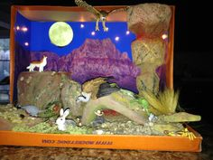 Desert Ecosystem Diorama, pictures, description, full information Ecosystems Projects, Science Projects, School Projects, Projects For Kids, Art Projects, Crafts For Kids, Project Ideas, Desert Ecosystem, Desert Biome