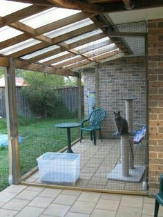 Cool safe patio for kitties
