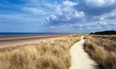 Path through marram grass by the sea on a sunny day at Holme-next-the-Sea, Norfolk, UK.