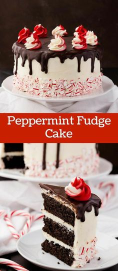 christmas cake Peppermint Fudge Cake is one of the best Christmas desserts. Fudgy chocolate cake layered with peppermint buttercream and chocolate ganache. Brownie Desserts, Oreo Dessert, Mini Desserts, Just Desserts, Delicious Desserts, Dessert Recipes, Snacks Recipes, Cake Recipes, Chocolate Desserts