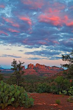 'Sunset Sky Over Sedona' looking down at Cathedral Rock from Upper Red Rock Loop Road, 13 June 2010 by Guy Schmickle on Flickr.