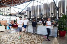 Explore New Zealand's Craft Beer Scene New Zealand Tours, New Zealand Travel, Coach Tours, Bay Of Islands, Beer Brewery, Cool Bars, Auckland, Craft Beer, Places To Visit