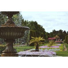 """90 curtidas, 3 comentários - Natália Catelan (@nataliacatelan) no Instagram: """"Parque mais lindo e florido 😍"""""""