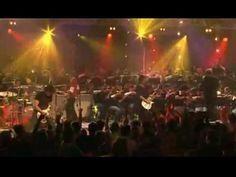 Collective Soul - Shine (Live)