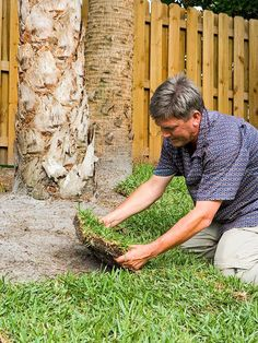 Spring or fall is a good time to start a new cool-season lawn or patch existing turf with sod. Moderate temperatures and abundant moisture get sod off to a quick start. High-quality sod will be thick, dense, and weed-free. It's a convenient way to get an instant solution to bare spots.        Get easy step-by-step instructions for laying sod.