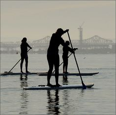 Stand up paddleboarding is a fast growing sport in Marin County. With access to water ways throughout the county, sport enthusiasts and water lovers have a new fun adventure to participate in.